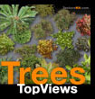 Trees Top Views Bird Eye - Arbres Vues en Plan - de dessus - texture