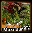 Banch - Layers - Maxi - Bundle - Branches - textures