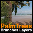 Palm trees branches layers Palmier