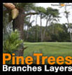 Pine Tree branches layers Pin