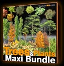 Trees Plants Maxi Bundle - Arbres Collections - texture